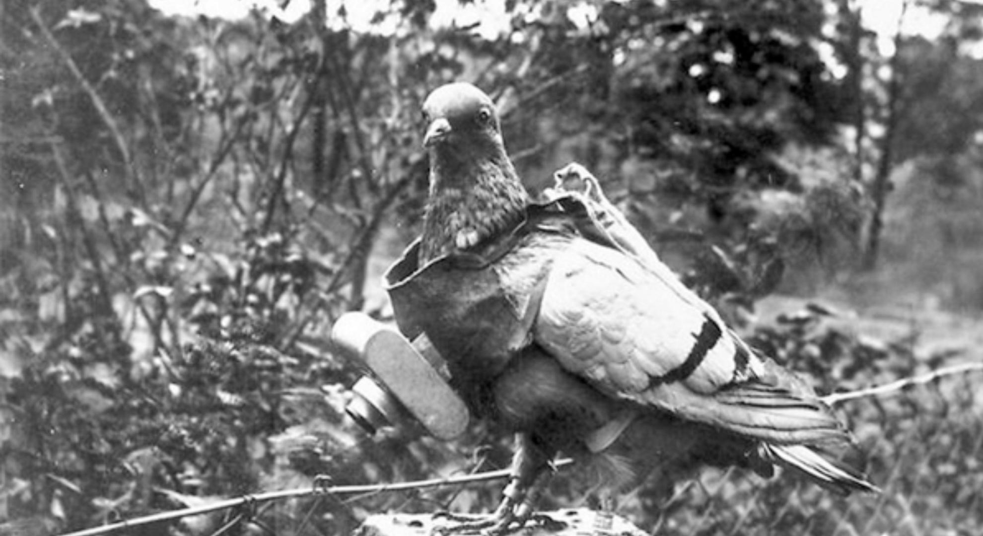 История аэрофотосъемки